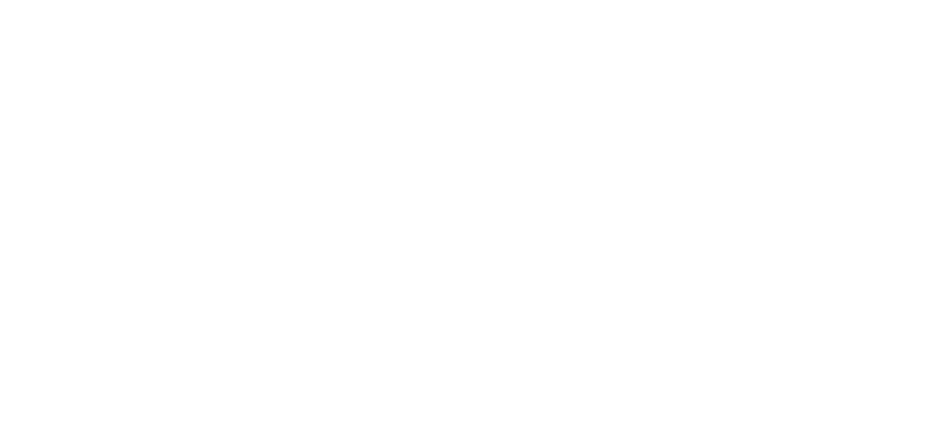Project Krijger